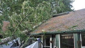 Roof damage like this might be avoidable. Here's what you should never do to your roof!